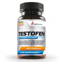 Booster Testosteronu...